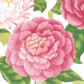 Salvrätik Camellias 25x25cm 0025096850742