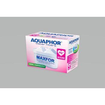 Vahetusfilter B25 Mg Aquaphor 4744131011349