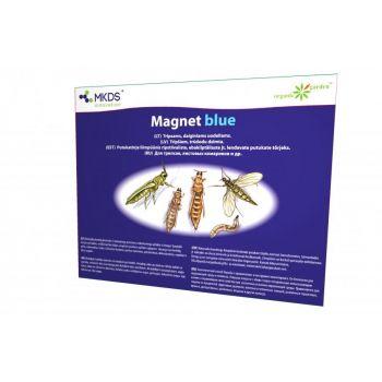 4771315389529 Magnet Blueliimpüünis
