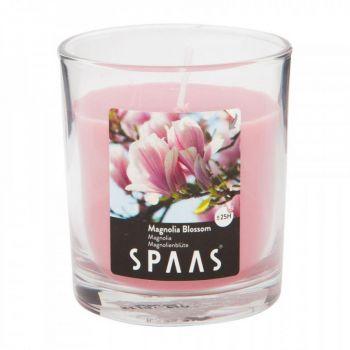 Lõhnaküünal klaasis läbipaistev 25h magnoolia