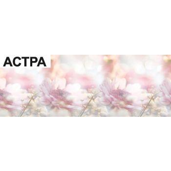 Köögitagaseina dekoratiivplaat 473 roosa aster