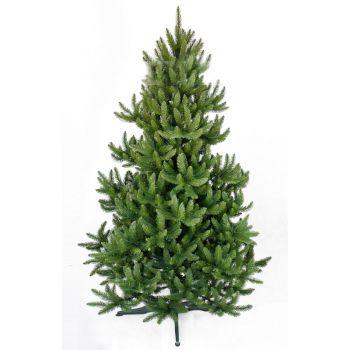 Jõulukuusk 300 cm metsik 4890775000789