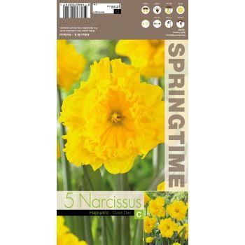Lillesibul nartsiss GOLD DISC UUS!, 8714665026191