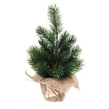Jõulukuusk jutepotis 22cm 6410412676504
