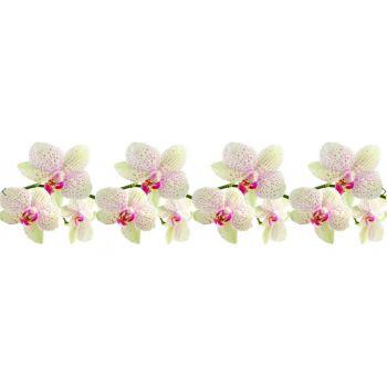 Köögitagaseina dekoratiivplaat 025 orhideeoks 4603739775025