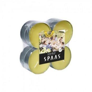 Teeküünal Spaas 10h 8tk maxi sidrunhein