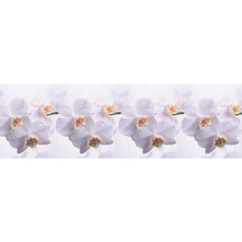 Köögitagaseina dekoratiivplaat 251 orhideeoks 4603739776251