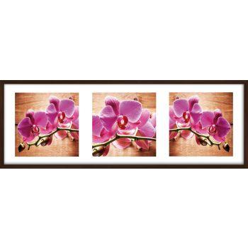 Pilt orhidee 30x90cm