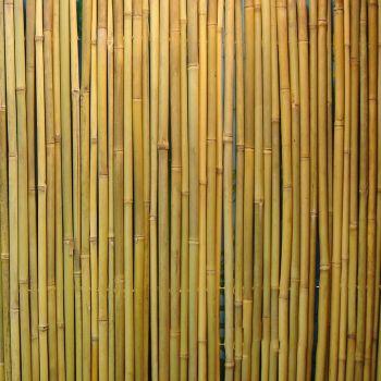 Rull bambusaed 1x3m d14/16mm 4741243839144