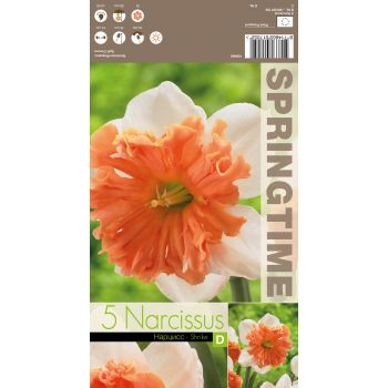 Lillesibul nartsiss SHRIKE, 8714665017052