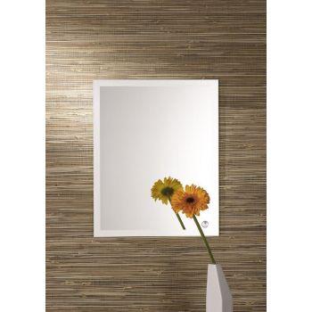 Peegel Lorena-2 40x50cm