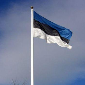 Lipp 120x189cm riigilipp