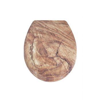 Pildid/Prill-laud AWD Timber.jpg