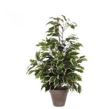 Kunstlill Ficus potis 65cm