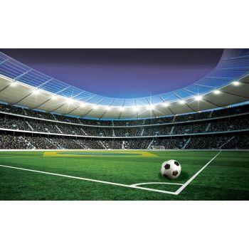 Fototapeet 1914 254x184cm staadion