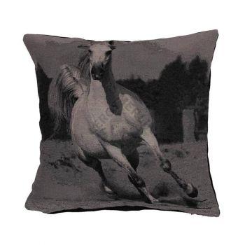 Padi Kon 40x40 hobune