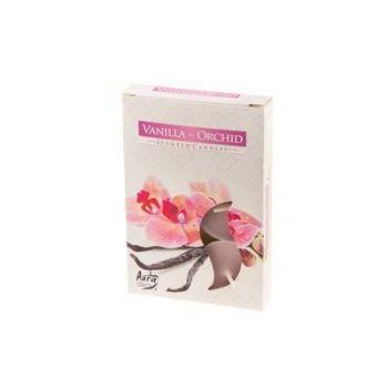 Teeküünal 6tk vanill-orhidee