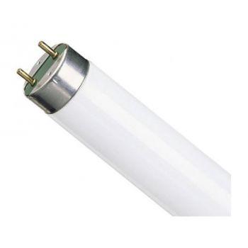Luminofoortoru T5 14W 830 4050300591520