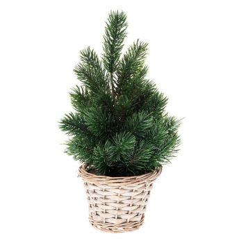 Jõulukuusk pajukorvis 30cm