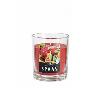 Lõhnaküünal klaasis läbipaistev 25h Troopilised viljad