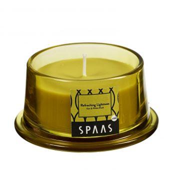 Küünal lõhna klaasis kooniline 15h lavendel/tsitrus 5411708161187
