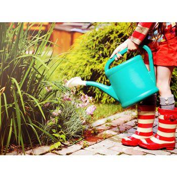 Kuidas säästa aias vett?