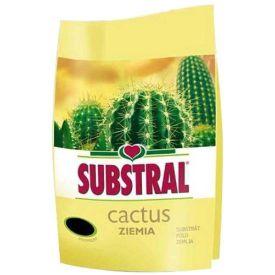 Muld 3L kaktustele Substral