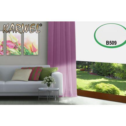 Ruloo B509 200x175 pimendav valge