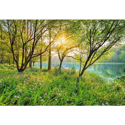 Fototapeet 8-524 Spring Lake