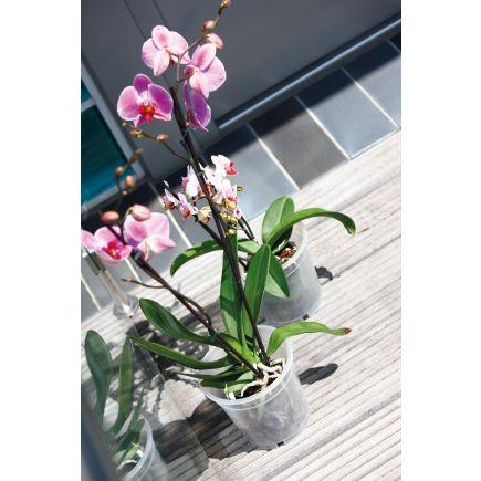 Lillepott orhideele d15cm h14,1cm 4027371421520